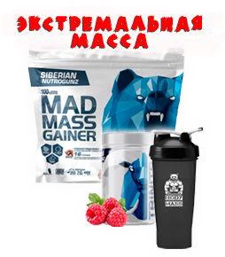 Mad Mass Gainer 2000 гр + Trinitro creatine 250 гр + шейкер