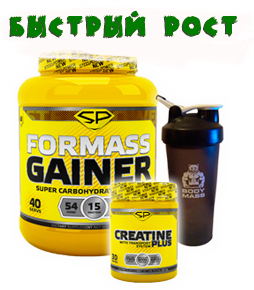 For mass gainer 3000g + creatine 300g SP + шейкер